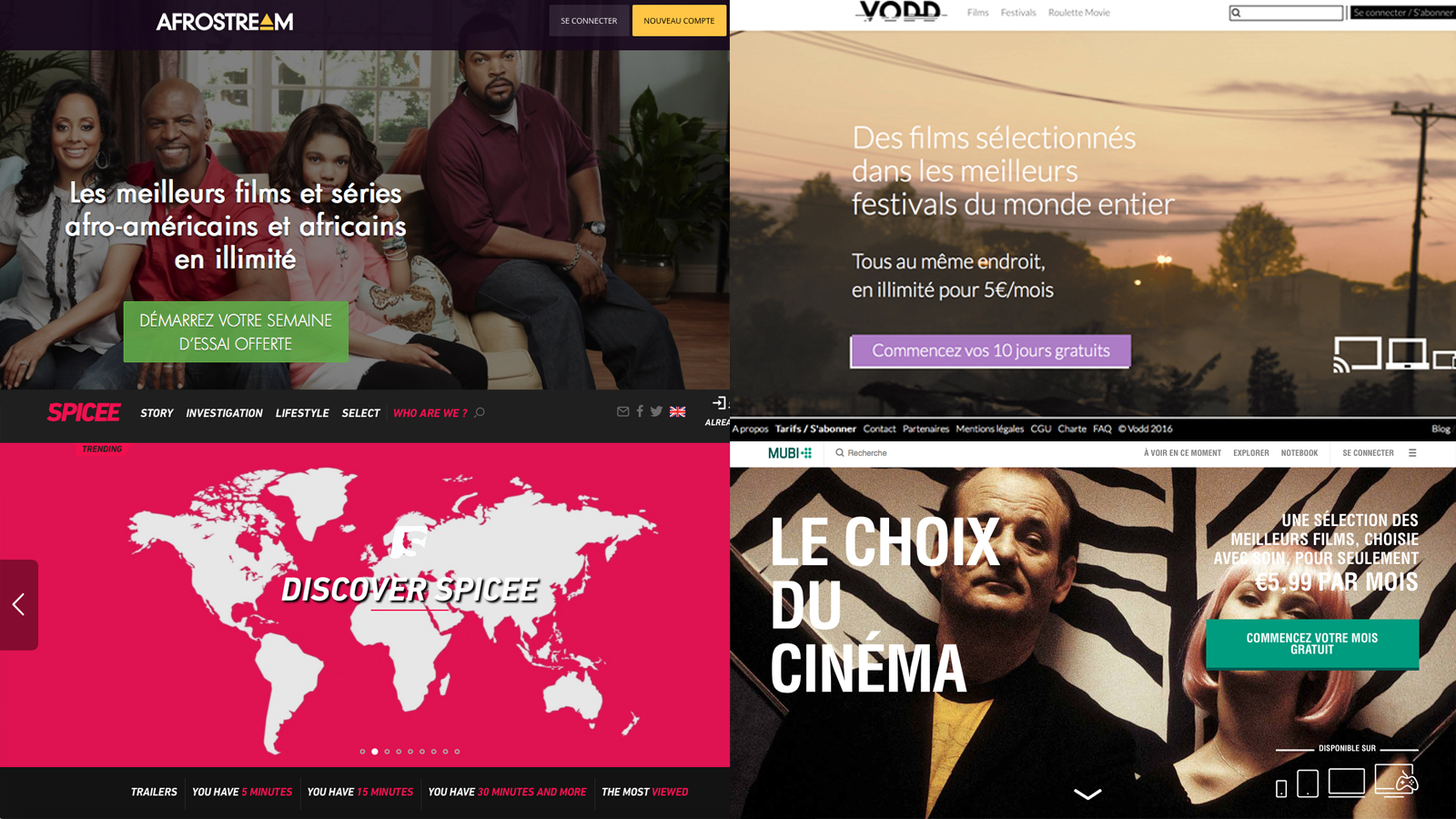 VOD SVOD niche streaming services OTT